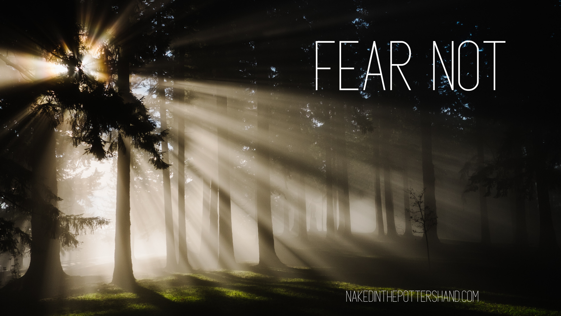 Fear Not blog (1)